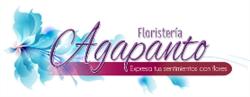 Agapanto Floristería