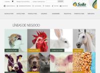 Sitio web de Solla S.a.