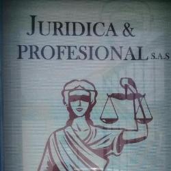 JURÍDICA Y PROFESIONAL SAS