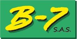B7 SAS